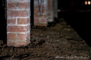 termite treatment penrith